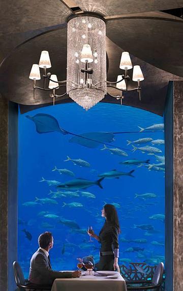 ベットに横たわりながら巨大マンタを観賞!ドバイの海中ホテル、アトランティスをご紹介