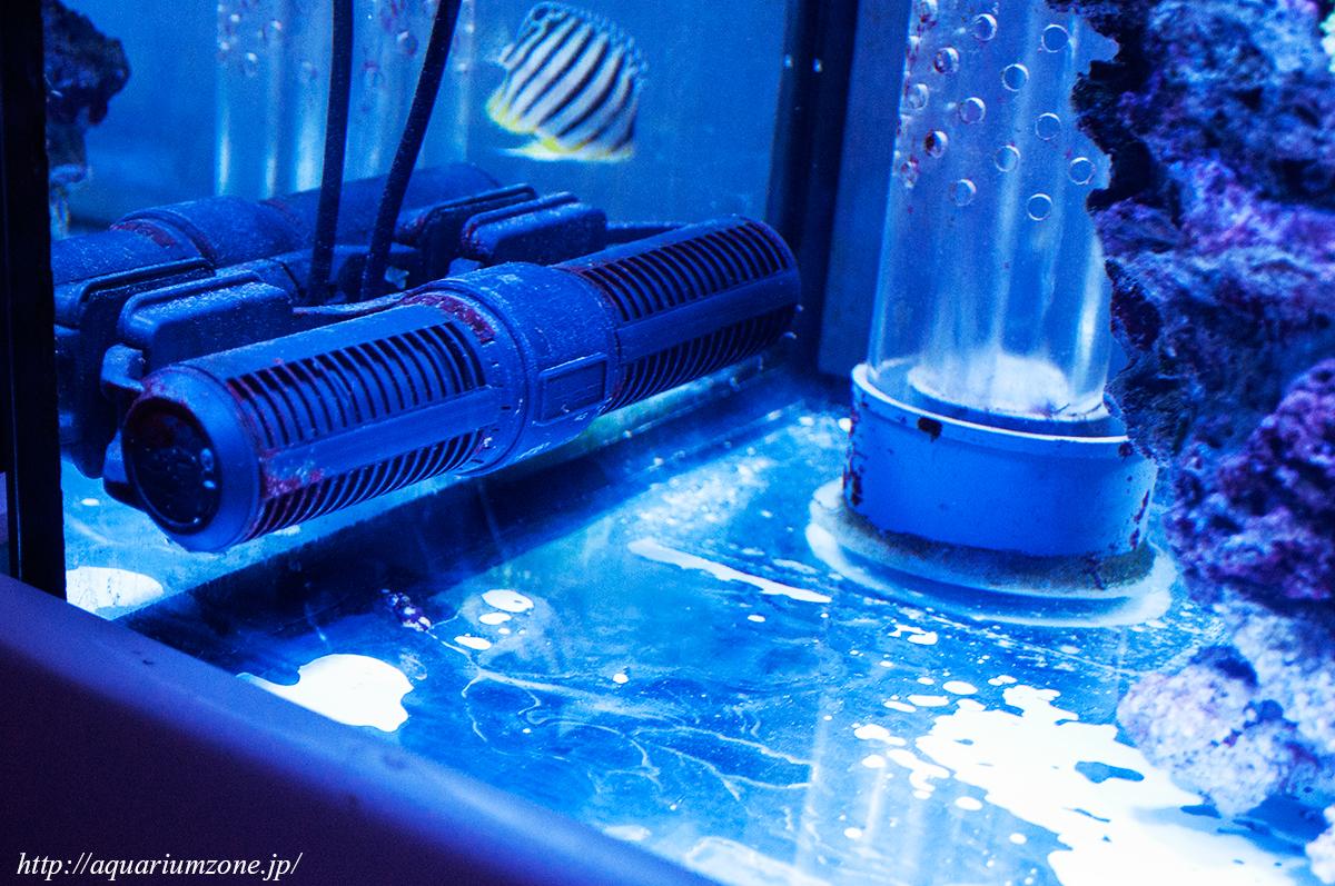 315 three quarter C-calcium reactor設置とハタゴ写真に対する海外の反応