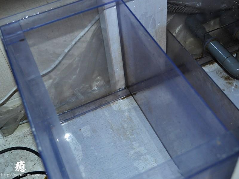 熱湯でカーリーを駆除した濾過槽