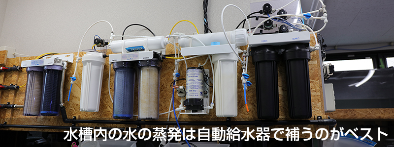 水槽内の水の蒸発は自動給水器で補うのがベスト
