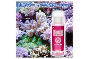 白点キラー珊瑚専用水槽用の通販